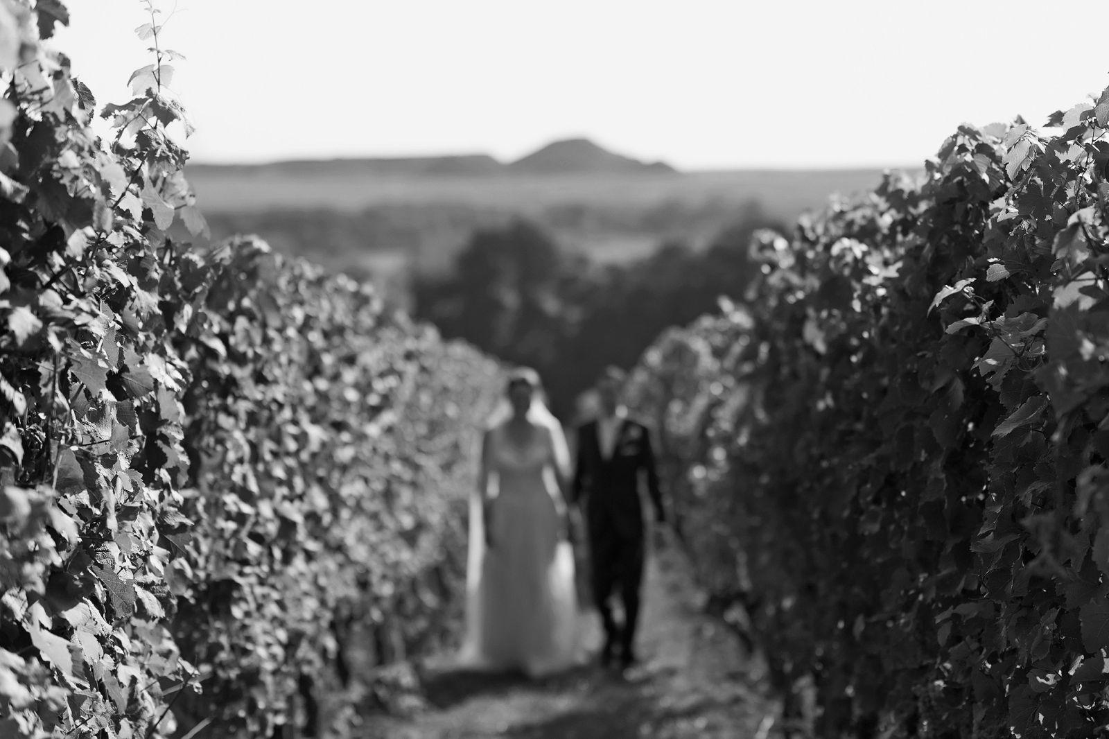 hochzeitsfotograf hochzeit bilder heiraten in frankfurt hochzeitslocation wicker weinberge weingut brautpaar